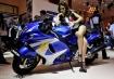 Model berpose di atas sepeda motor Suzuki Hayabusa yang dipajang pada pameran Indonesia Motorcycle Show 2014 di JCC Senayan, Jakarta, Rabu (29/10). Pameran motor terbesar di Indonesia yang digelar 29 Oktober 2014 - 2 November 2014 diperkirakan akan menghasilkan transaksi hingga Rp 35 miliar dengan perkiraan pengunjung sebanyak 300 ribu orang. ANTARA FOTO/Andika Wahyu/ama/14.