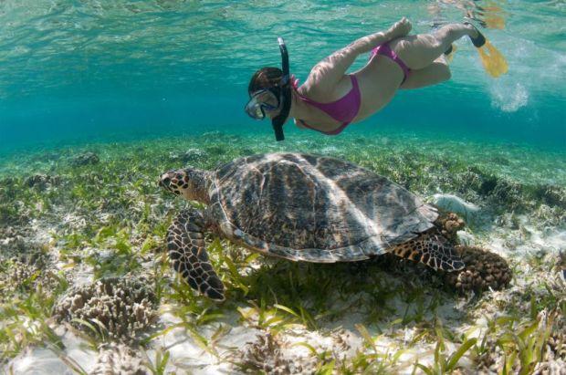 sanur-snorkeling-in-bali-bali-kids-guide-1